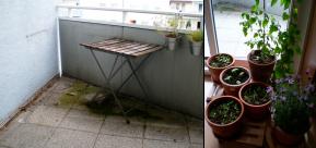 balcony + planters