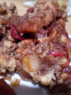 Cranberry Pear Crumble 04