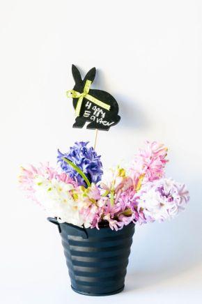 DFN - Easter 2015