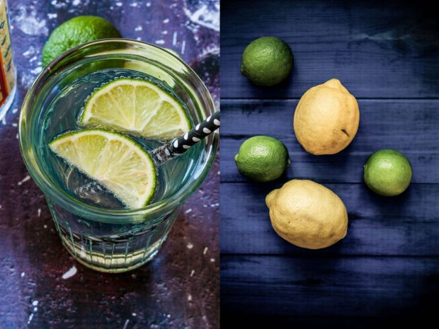 Diptych - Gin Tonic